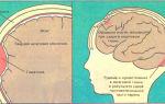 Как остановить кровь на голове при ушибах: что делать если ребенок разбил голову