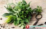 Как восстановить пищеварение и работу желудка после отравления: диета, препараты и народные рецепты для лечения жкт