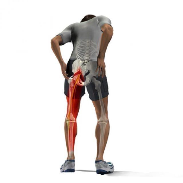 Воспаление мышц бедра — симптомы и лечение, признаки миозита и диагностика: УЗИ и МРТ полусухожильной и портняжной мышцы