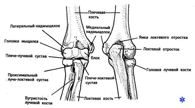 Вывих локтевого сустава у детей лечение