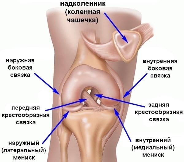 Операция на связки коленного сустава и период восстановления, реабилитация после замены и сшивания связок колена