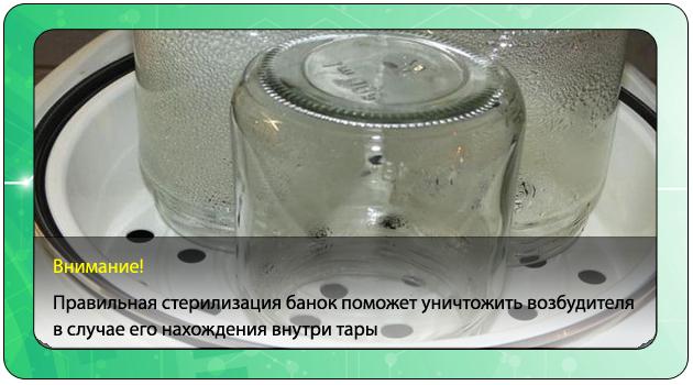 Какие продукты вызывают ботулизм, могут ли в варенье или меде развиваться палочки ботулизма