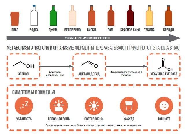 Сколько держится алкоголь в крови (таблица и калькулятор распада спиртного) и как он влияет на кровь, допустимая промилле