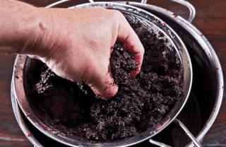 Можно ли отравиться вином — забродившее, просроченное и домашнего приготовления