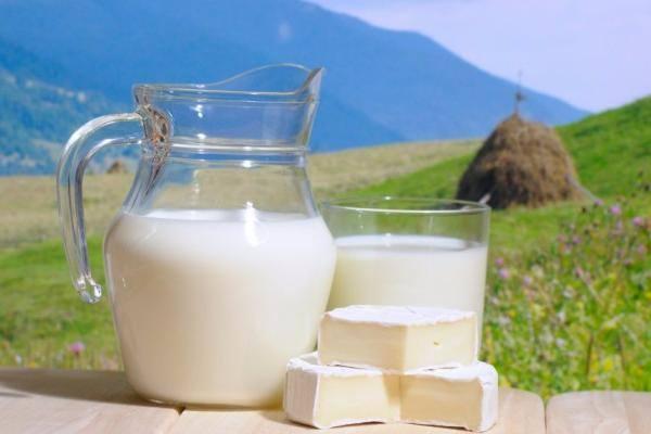 Отравление молочными продуктами – симптомы и лечение, можно ли употреблять продукты из молока при других отравлениях