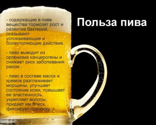 Пивные дрожжи: для чего их принимают, в чем польза и вред субстратов, что входит в состав продукта и кому нельзя пить дрожжи