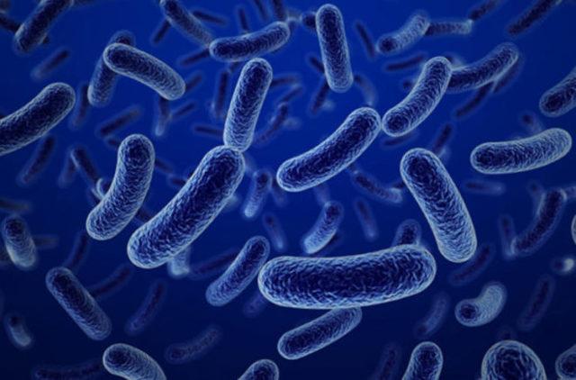 Отравление сосисками и колбасой – симптомы и лечение, влияние просроченных продуктов на организм