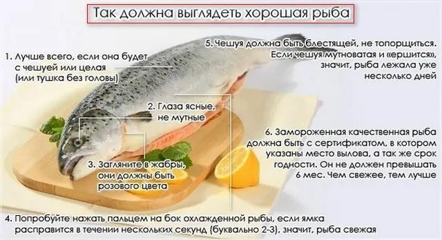 Отравление рыбой — симптомы и лечение интоксикации консервами и копченой рыбой