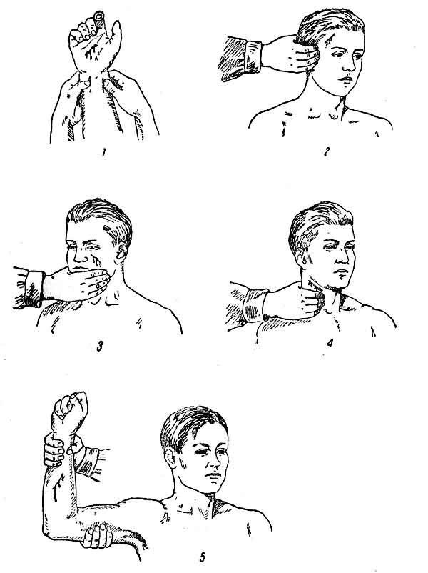 Максимальное время наложения жгута зимой и летом: правила и техника накладывания кровоостанавливающей закрутки