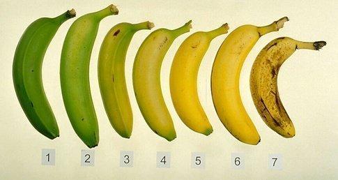 Бананы при отравлении (можно ли есть) и что делать, если отравился бананом: какие симптомы и как оказать первую помощь
