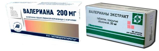 Передозировка валерианы: побочные действия и симптомы отравления, суточная и разовая доза валерьянки