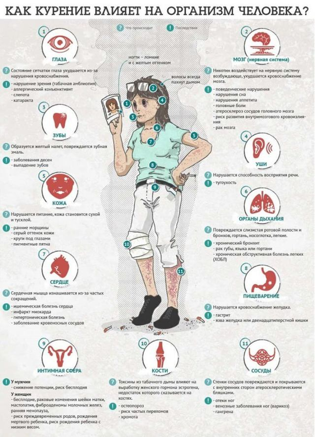 Марихуана польза и вред — полезные свойства и последствия регулярного употребления каннабиса