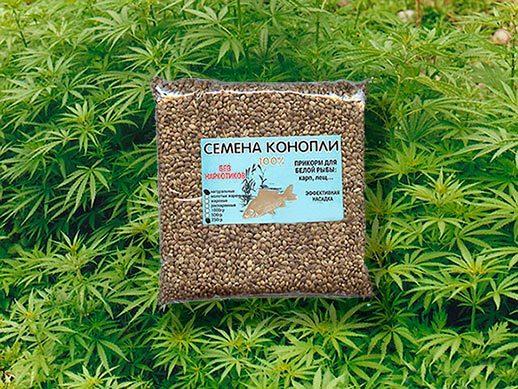 Передозировка марихуаной – что делать если перекурил, смертельная доза каннабиса для организма
