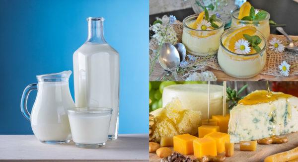 Отравление сыром – симптомы и причины интоксикации, первая помощь при отравлении сыром и возможные последствия