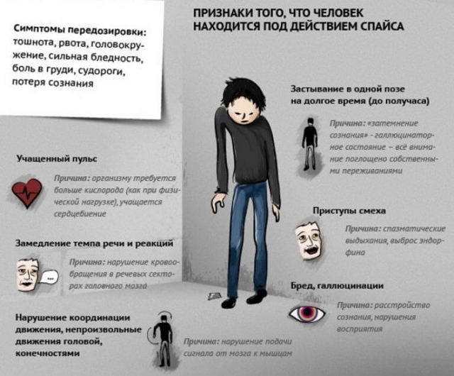 Из чего состоит насвай — признаки употребления и лечение зависимости, запрещен ли насвай в России