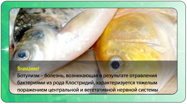 Ботулизм в рыбе: симптомы отравления соленой, копченой и вяленой рыбой, профилактика ботулизма при употреблении морепродуктов