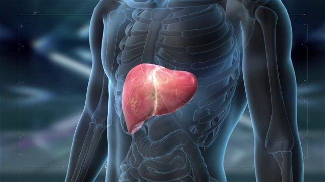 Отравление опятами (съедобными и ложными) – симптомы, первая помощь и возможные последствия интоксикации