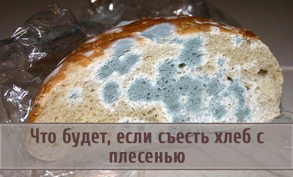 Что будет если съесть хлеб с плесенью – опасна ли черная и розовая плесень для организма человека