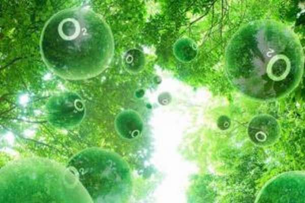 Кислородное отравление — что будет если дышать чистым кислородом и почему нельзя этого делать
